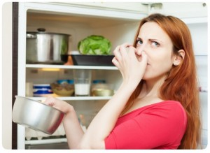 refrigerator air out from odors