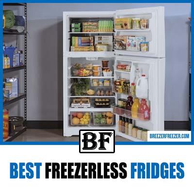 Best-freezerless-fridges